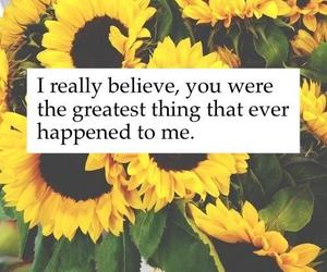 quote, flowers, and believe image
