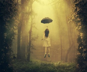 umbrella, forest, and Dream image