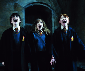 harry potter, hermione granger, and ronald weasley image