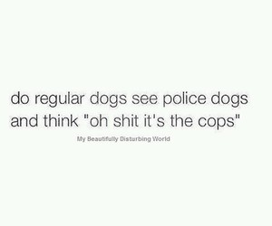 dog, funny, and cops image