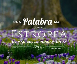 frases, palabras, and psicologia image