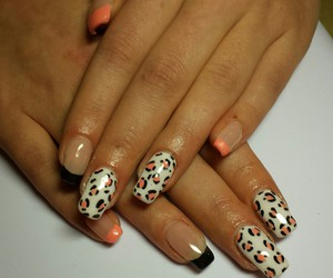 leopard, nails, and white image