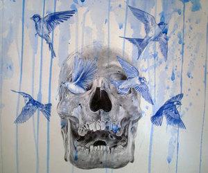 skull, bird, and illustration image