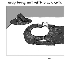 witch, cat, and funny image