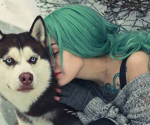 dog, hair, and green image