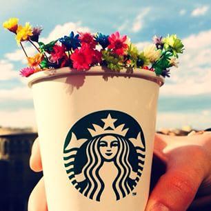 happy, flowers, and starbucks image