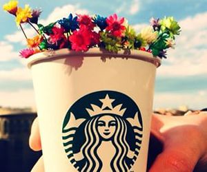 starbucks, flowers, and hipster image