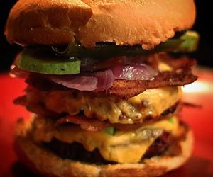 cow, food, and hamburger image