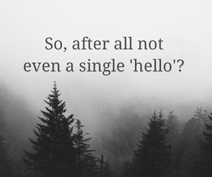 hello, single, and why image
