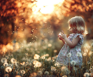 flowers, child, and baby image