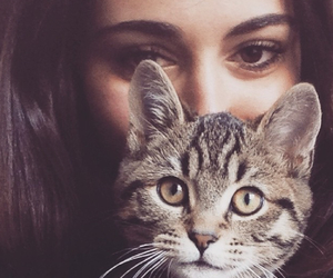 adorable, brunette, and cat image
