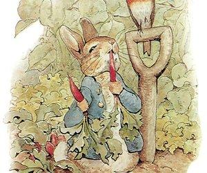 Image by Hanga Pénzes