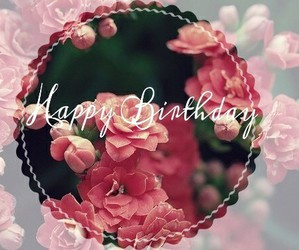 happy birthday, flowers, and pink image