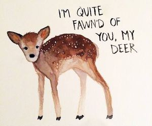 deer, cute, and quotes image