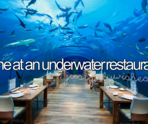 before i die, restaurant, and food image