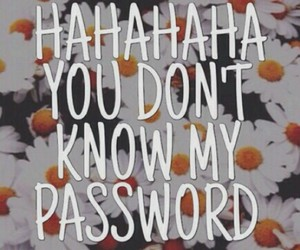 flowers, password, and wallpaper image