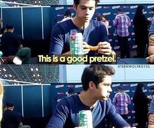 pretzel, dylan o'brien, and funny image