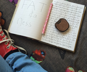 diary, fat, and reese's image