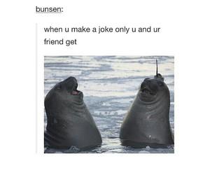 joke, laugh, and true image