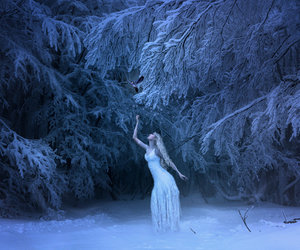 fantasy, forest, and winter image