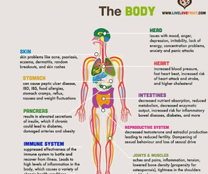 health, stress, and body image