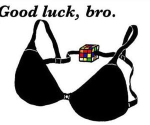bra, funny, and bro image