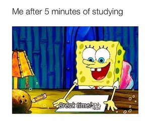 funny, studying, and spongebob image