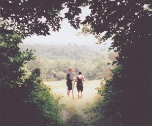 forest, summer, and people image