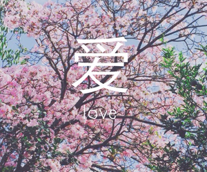 love, flowers, and chinese image