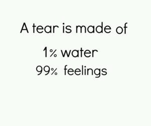 feelings, cry, and quotes image