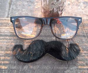 glasses and moustache image