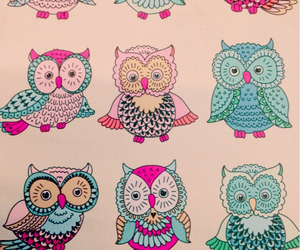 owl, drawing, and pink image