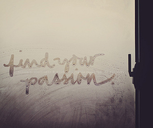 passion, quote, and window image