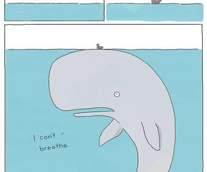 funny, whale, and lol image