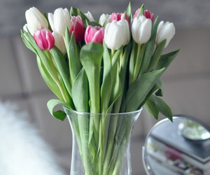 flowers and tulip image