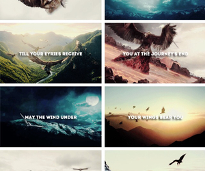 eagle, hobbit, and middle earth image