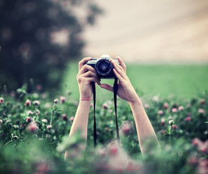 camera, flower, and cool image