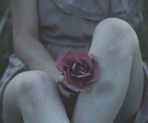 alone, girl, and rose image