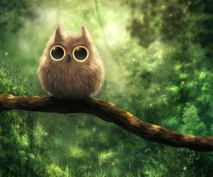 owl and green image