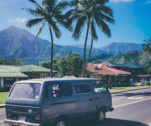 summer, tropical, and van image