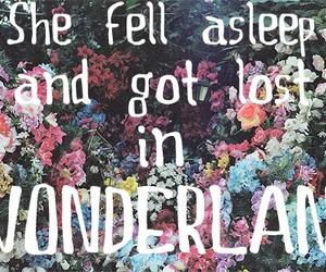 wonderland, flowers, and lost image