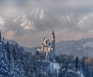 castle, neuschwanstein, and travel image