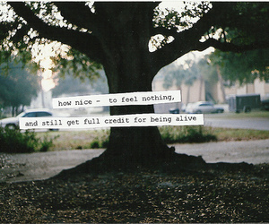 tree, quote, and text image