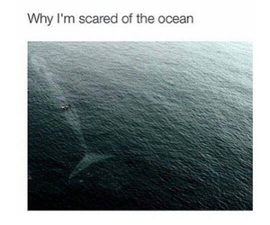 ocean, scared, and scary image