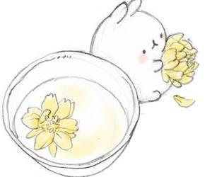 flowers, molang, and kawaii image