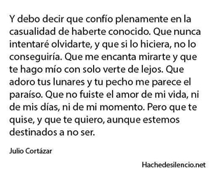 love, julio cortazar, and quotes image