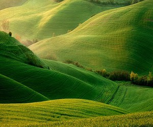 green, nature, and hills image