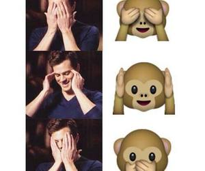 Jamie Dornan, christian grey, and monkey image