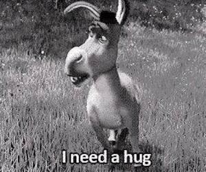 black and white, donkey, and i need a hug image