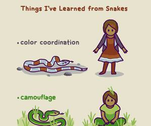 funny, knowledge, and reptiles image